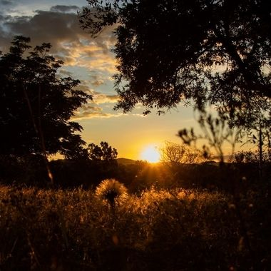Sun Set day 10 lock down 2020, Johannesburg, South Africa