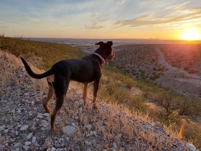 Admitting the Sunset