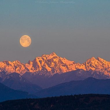 What a gorgeous scene this morning as the moon set upon the Olympic Mountains, We are so fortunate to live among such beauty.