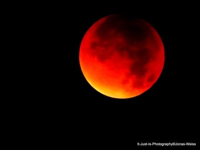 Bloodmoon II