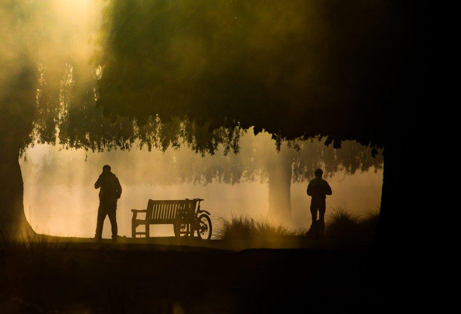 People enjoying the park during a misty sunrise