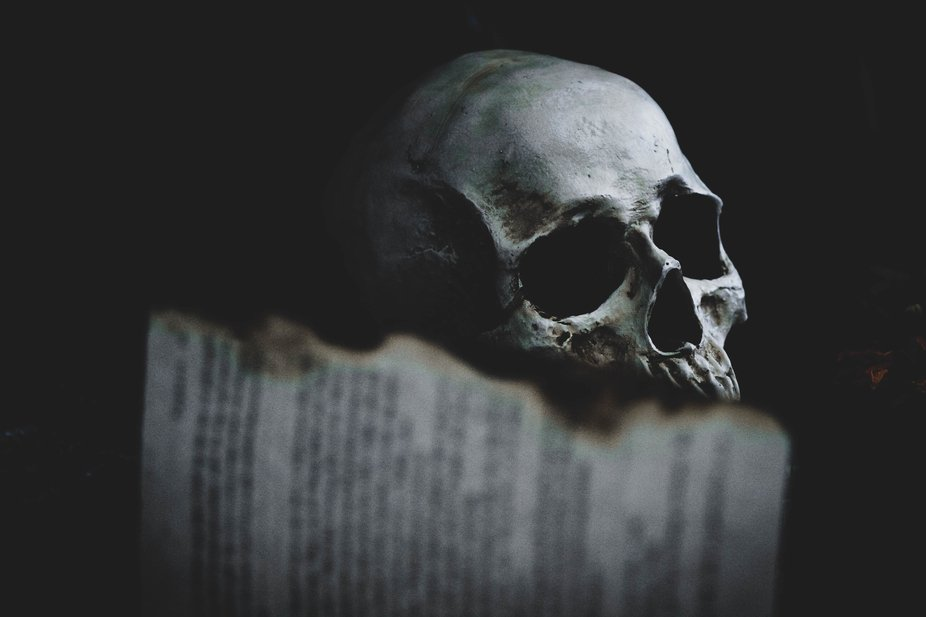 burnt edges of a book and a skull