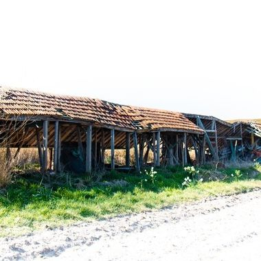 Ruin of a barn at Texel, Netherlands