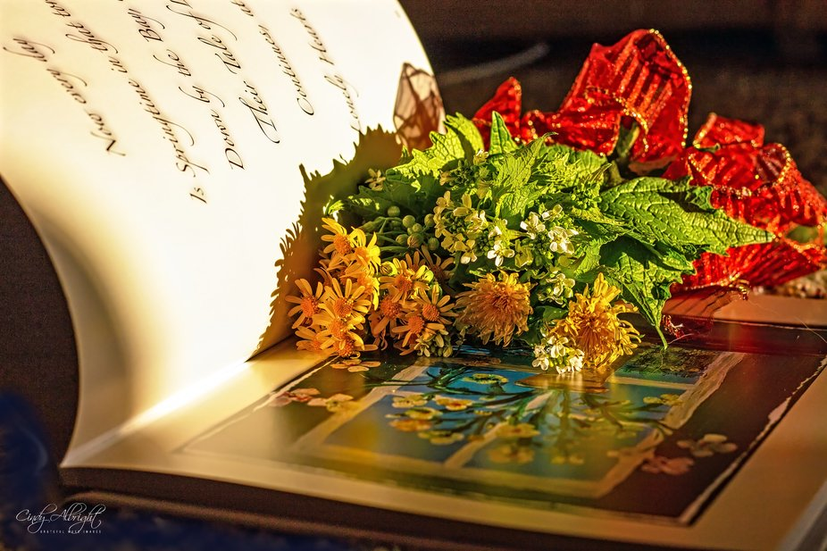 Picking a few wild flowers and reading a poetic love story is good for the soul.