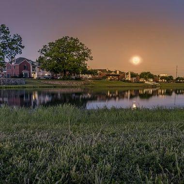 Moonset at dawn ...