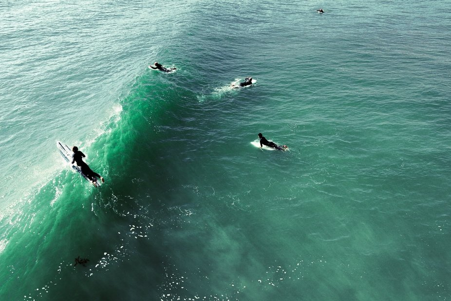 Surfers in several different stages of surfing are all showcased. One attempts to catch a wave, o...