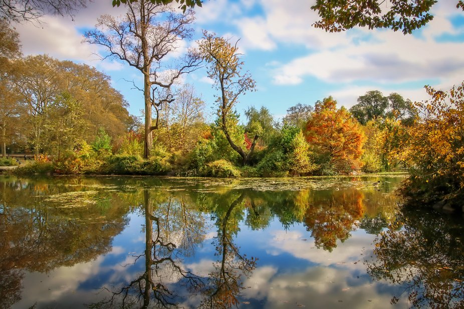 This is another view of Prospect Park in Brooklyn NYC. It was a perfect Autumn day, not even the ...
