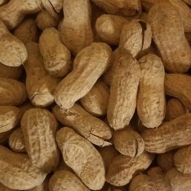 I decided to take a picture of the peanuts because my husband eats peanuts every night he has a big bucket Bucket of them by his  Recliner.