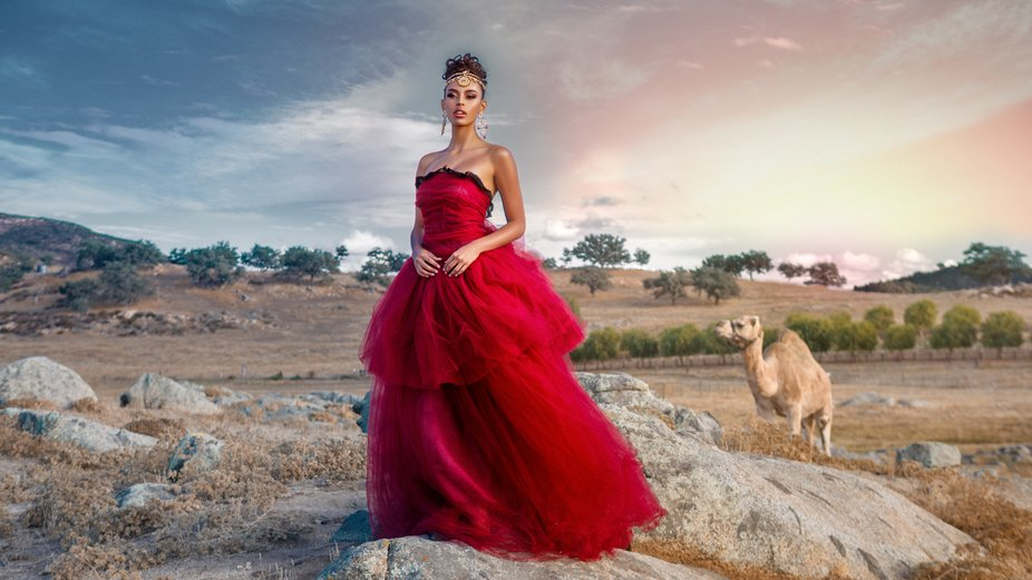 Empress of Camels