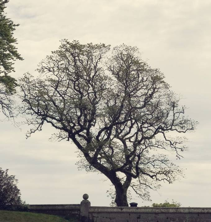 Dunrobin Castle Gardens, Sutherland, Scotland
