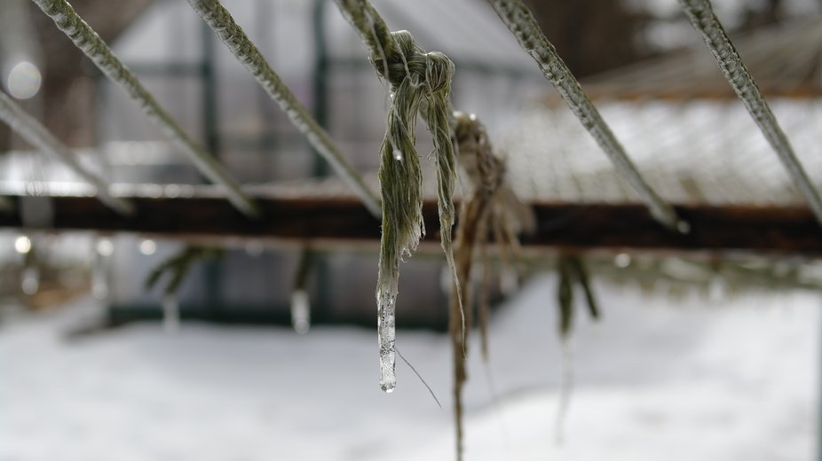 Sometimes you luck out when you leave the hammock outside for the winter. A bit of frozen ice coating and transforming the cords into art.