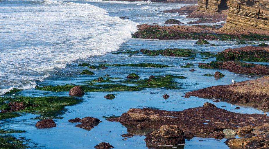 Ocean waves breaking onto rocky seashore.