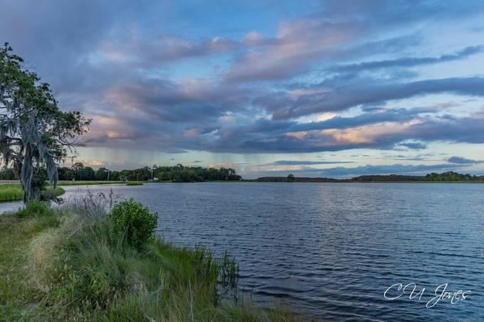 Bear Island WMA, Greenpond, SC