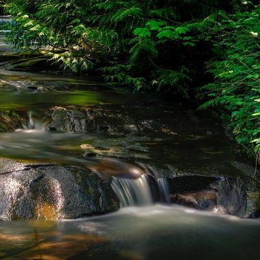 Green Spring Stream