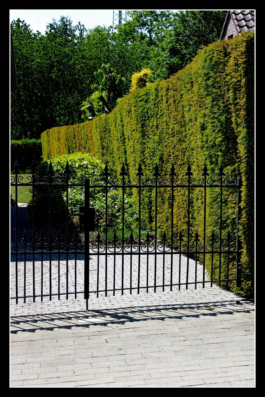 View the beautiful Flowers, Houses and animals I encountered during this spring walk through Tienen Here one of the beautiful flower beds of the houses in the vicinity of the recreation center Viandra Sincerely Theo-Herbots-Photography https://groetenuittienen.blog/