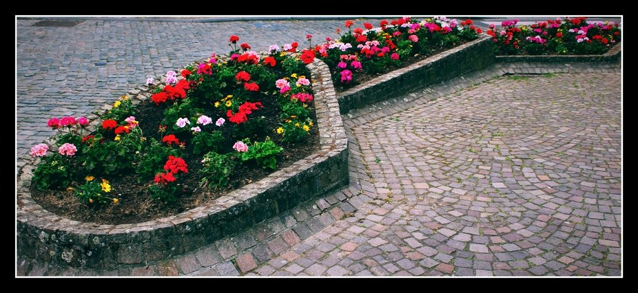 Every year new flower boxes and flower beds are placed everywhere in Tienen  Theo-Herbots-Photogr...