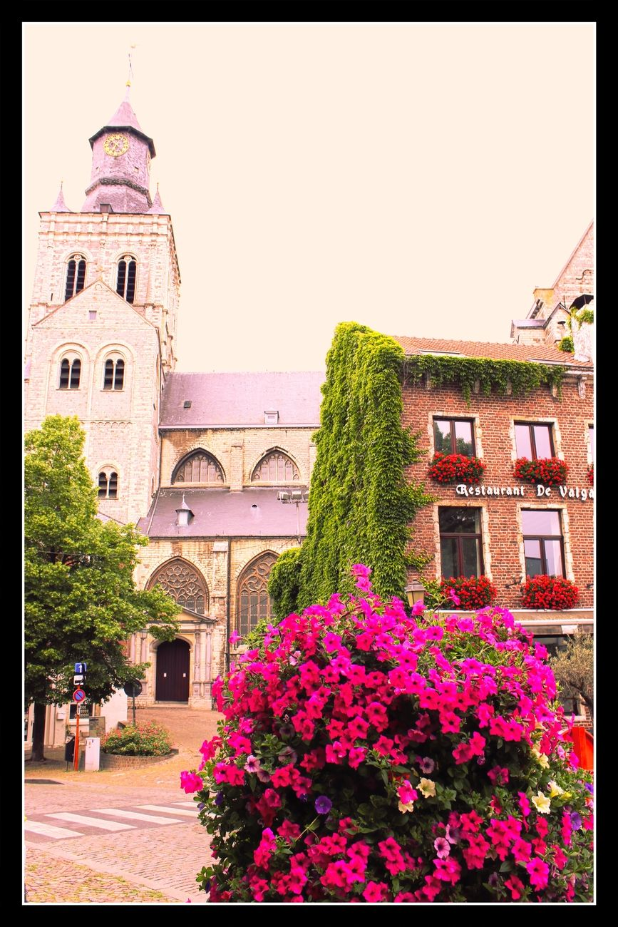 Every year new flower boxes and flower beds are placed everywhere in Tienen Theo-Herbots-Photography https://groetenuittienen.blog/