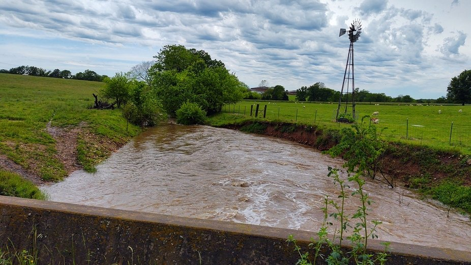 This photo was taken about 2 blocks from our house, on 05/22/2020 @ 1:30 pm. This is a dry creek,...