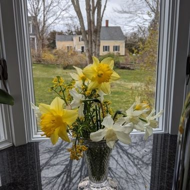 Spring's Bouquet