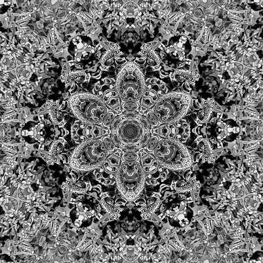 Kaleidoscope2_Fiddleheads_B&W