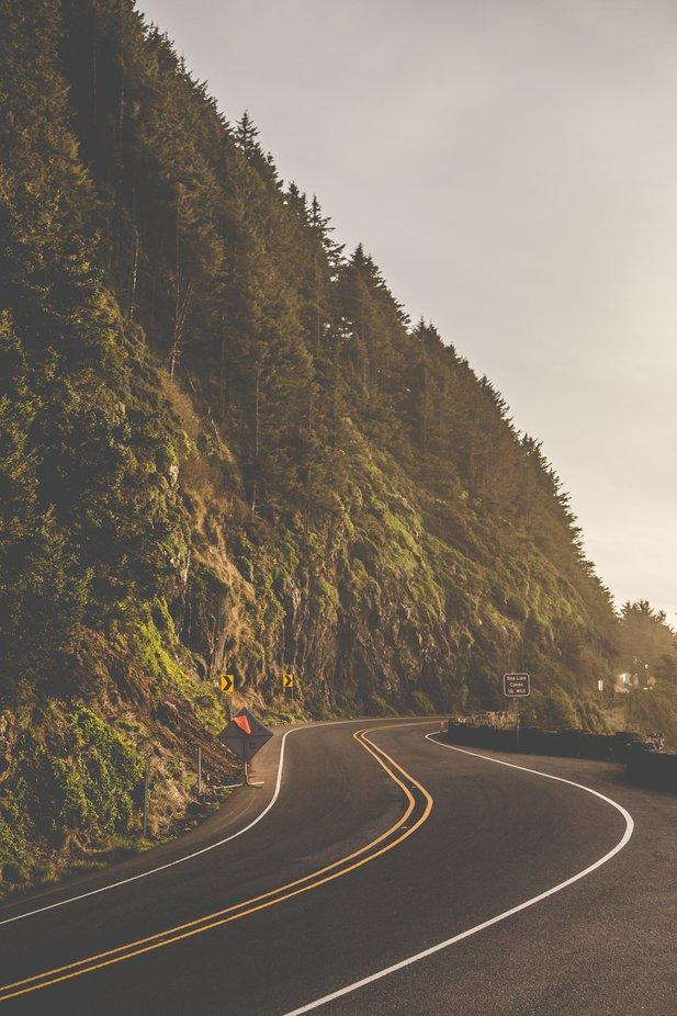 Oregon-3295
