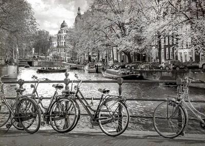 AMSTERDAM BW