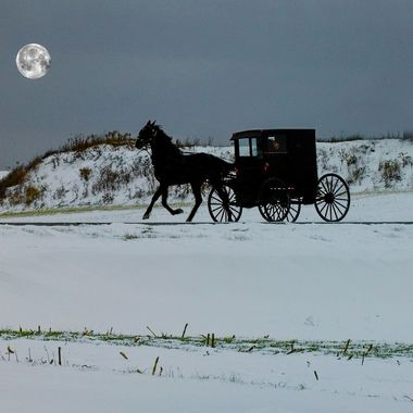 Mennonite Wagon
