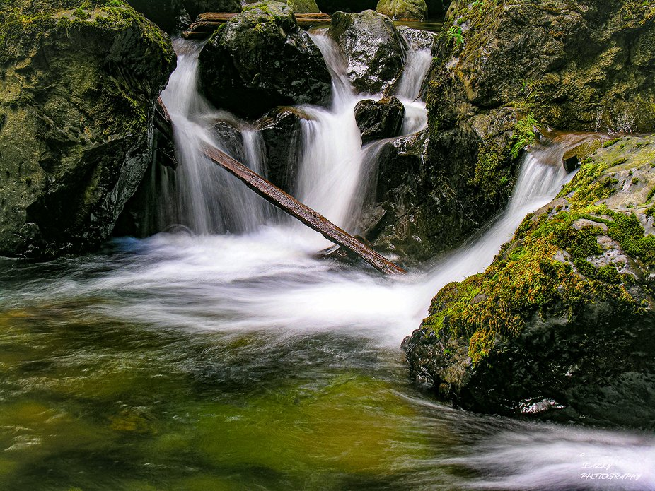Quad Falls located on Orcas Island in Moran St. Park in the San Juan Islands.