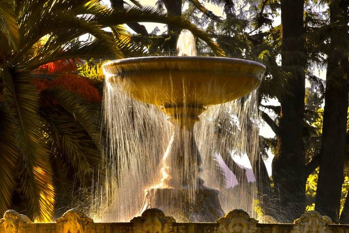 Flowing Beauty.   Historic Fountain located in Sausalito just north of the Golden Gate Bridge.   Always love experimention with water motion to capture something just a little differnt.  The gooden hour glow backlighting the water inspired me capture tuis