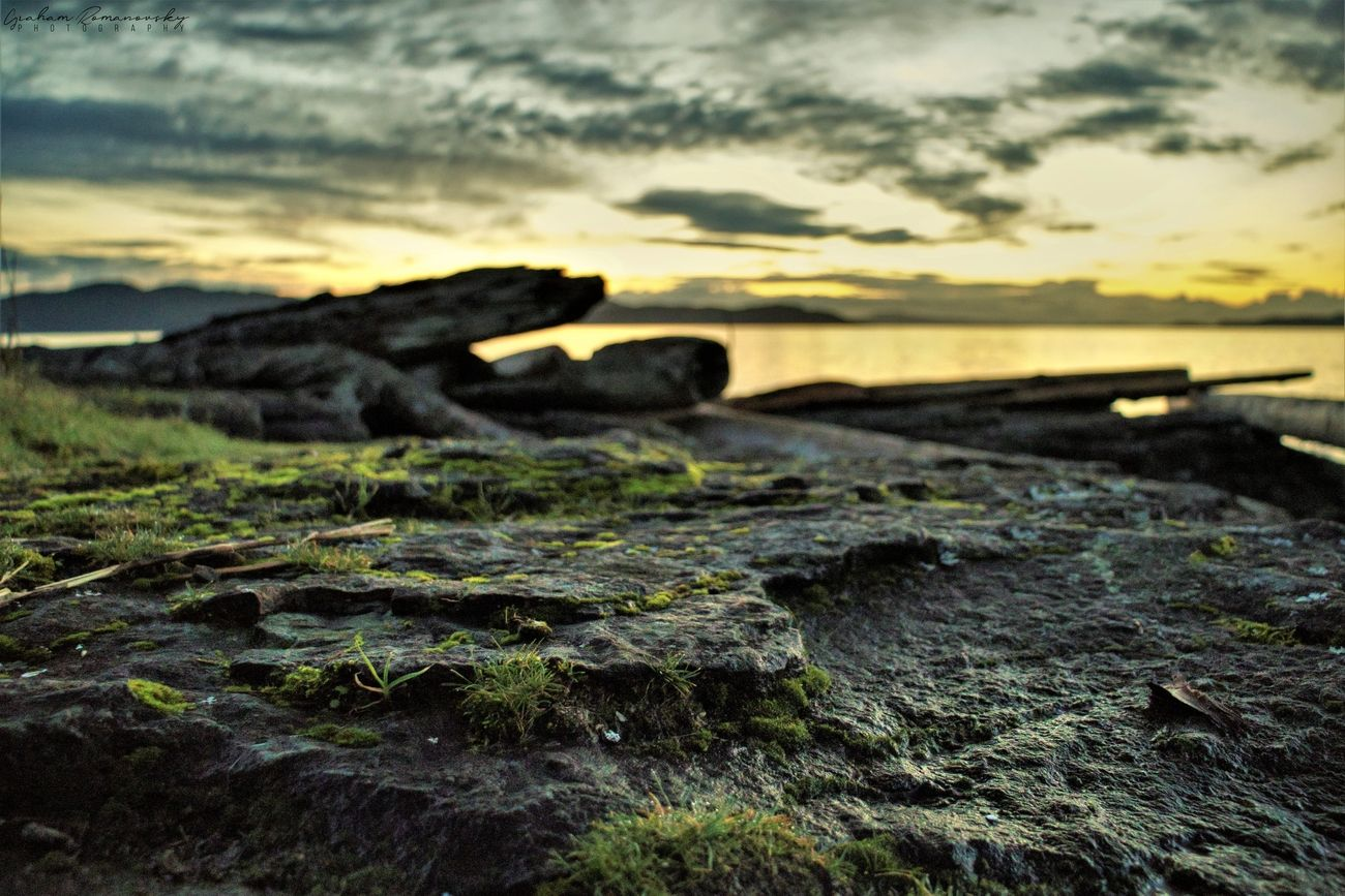 PNW shoreline on Salt Spring Island at sunrise