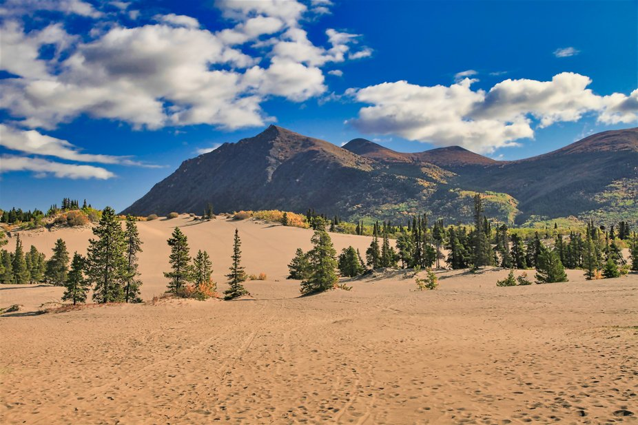 Smallest Desert In The World- Carcross, Yukon, Canada Sept 2019  I had 5 minutes to compose this....