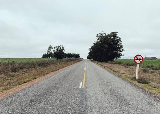 Ruta 15, Rocha