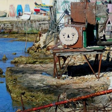 Bird homes - Manoel Island