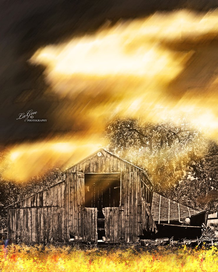 Wonder Valley, historic foothill barn during a dry spell.  Saved