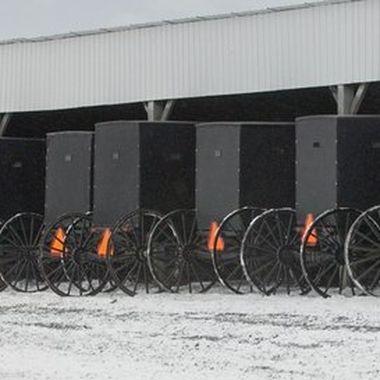 0098 Mennonite Wagons