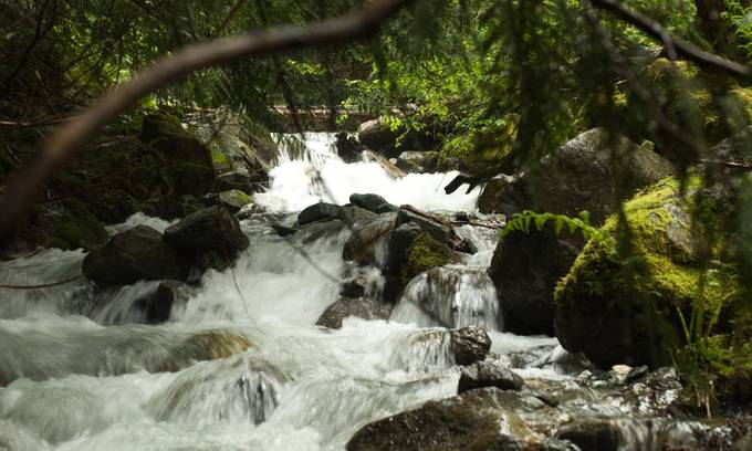 Some of the waters on Mt Sproatt.