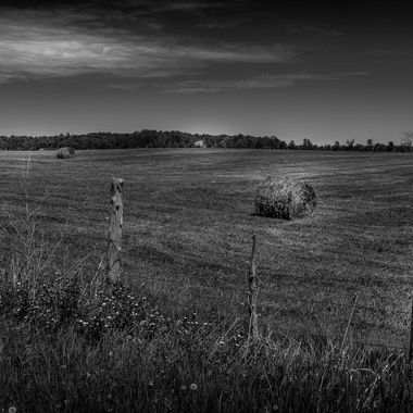 Pontiac Field-1