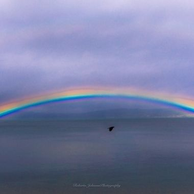The perfect rainbow,,, This rainbow came to me last September on the anniversary of the loss of my son (thru marriage) and is very special to me.  Hood Canal, Washington, USA