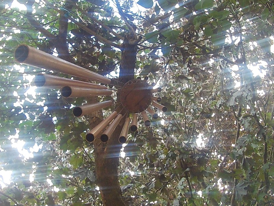 Another aspect of my garden that I photographed, I shot it from underneath the wind chime.