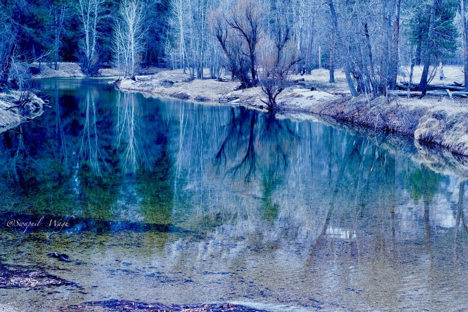 This Picture was taken on Feb 16 2020 in Yosemite National Park US using SONY ILCE-6000 &...