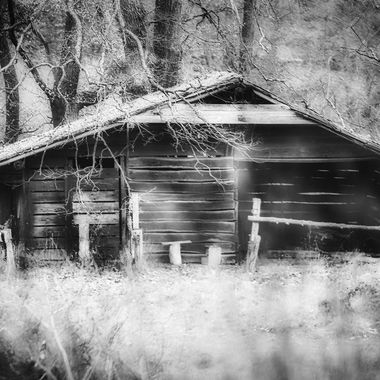The old Cabin in the woods.