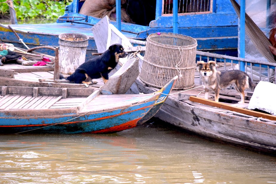 Friends on the boats on the Tonle Sap River in Cambodia