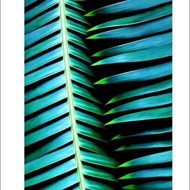 Intertwining Leaves
