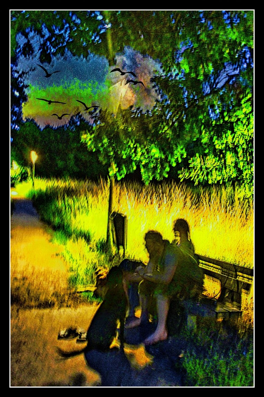 Along the river De Gete in Tienen there is a pleasant walking path, which is also illuminated at night. Here a few people who came to enjoy with their two dogs. I did not focus their face for privacy Sincerely Theo-Herbots-Photography https://groetenuittienen.blog/