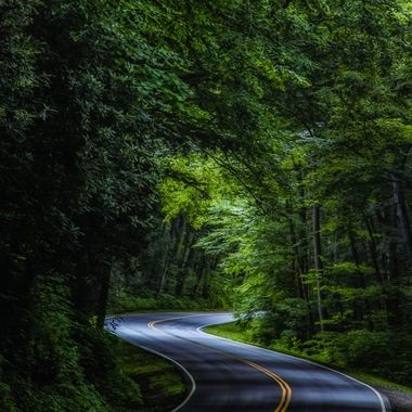 A shot of highway 441 in Great Smoky Mountains National Park (North Carolina Side).
