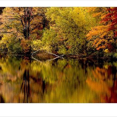 0012 Autumn