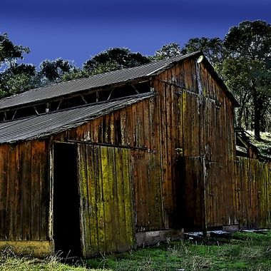Old weathered barn that has seen better days.  Location is in the Sierra foothills in an area of open range where livestock has the right of way and no fences to block their path.