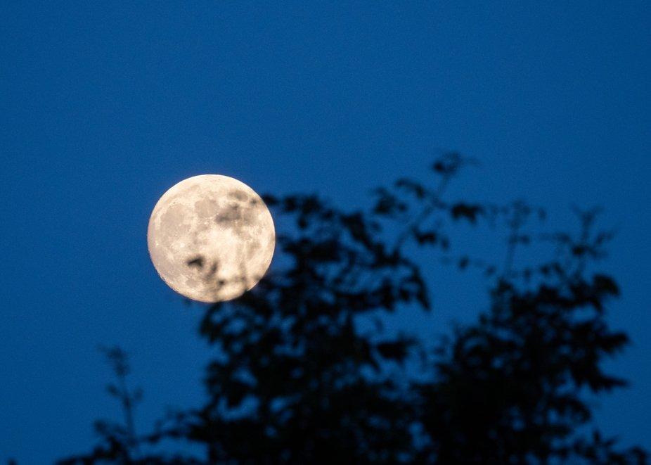 Full moon rising at sunset - practice