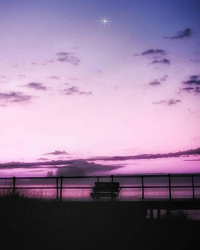 purple morning!