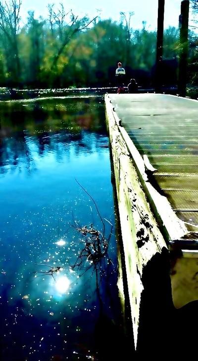 Board walk Edisto River